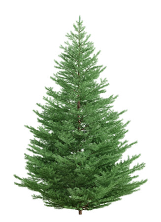abeto de Navidad aislado sobre blanco representación 3D
