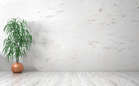 Empty interior background, room with marble wall, vase with plant on the white wooden floor 3d rendering Stockfoto