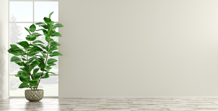 Empty interior background, room with beige wall and parquet floor, vase with green home plant against the window 3d rendering
