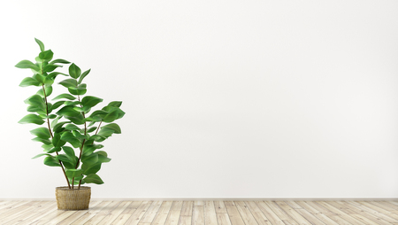 Empty interior background, room with white wall, vase with plant 3d rendering