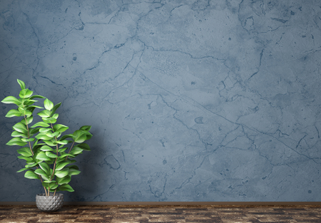 Empty room interior background, blue stucco wall, vase with plant 3d rendering 写真素材