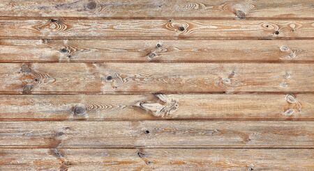 Pine wood planks. Wooden boards wall texture. Grunge background