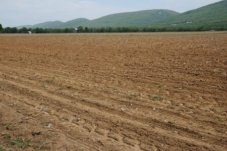 Farm field  prepared for planting, mountain backgroound.