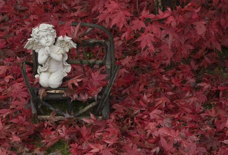 Small lawn ornament surrounded by freshly fallen Japanese Maple leaves.