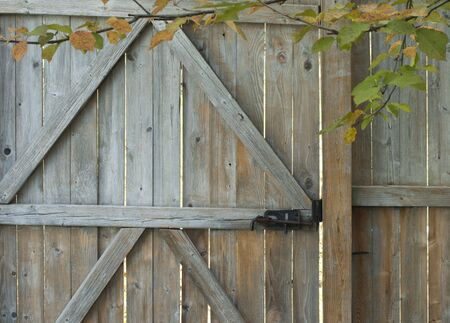 Weathered, rustic wooden fence gate, with frame of early autumn leaves. Reklamní fotografie