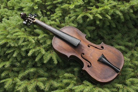 Vintage Violin In The Pines