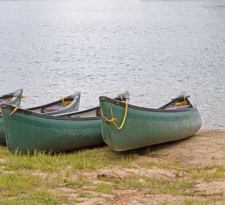 Row of canoes by a lake side photo