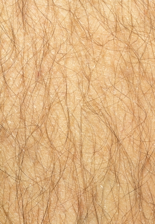 hairy male: Mans hairy leg