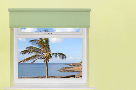 View of palm tree and sea from window Stock Photo