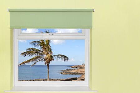 Zobacz palmy i morze z okna