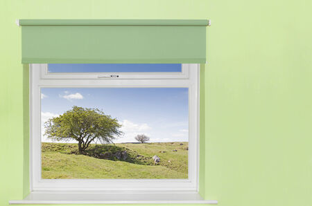 View of tree and rocky grass covered hills from a window Stock Photo