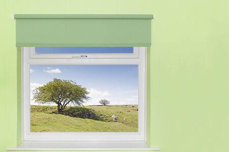 Widok drzewa i skaliste wzgórza pokryte trawą z okna Zdjęcie Seryjne