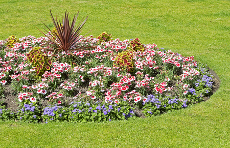 Ornamental flower bed in gardens
