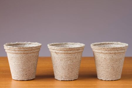turf: Row of small peat flowerpots on a wooden table