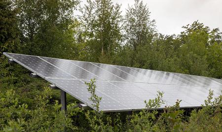 solar array: Array of solar panels on woodland hillside Stock Photo