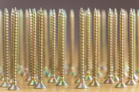woodscrew: Several plated wood screws on a wooden board Stock Photo