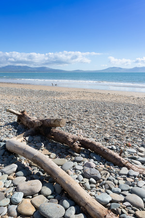 Driftwood on stony beach at Newborough, Anglesey, North Wales
