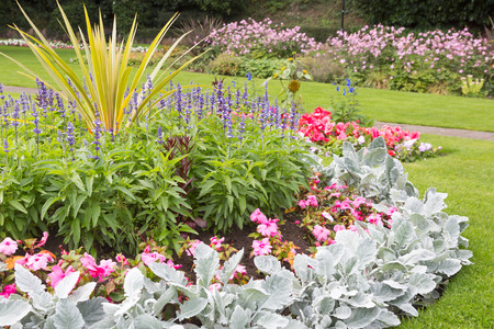 Beautiful flowers in park ornamental gardens Stock Photo