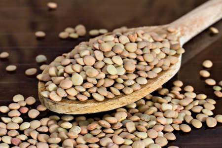 castelluccio: Lentils - Lens culinaris