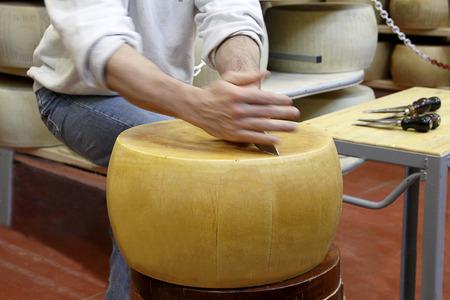 Cutting an italian wheel of cheese Stock Photo