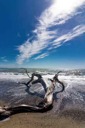 Nice sea landscape with a trunk in the foreground on the beach Stock Photo