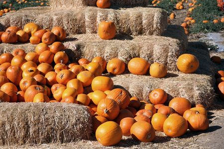Straw bales stacked up with pumpkins in front of them photo