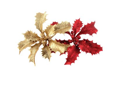 Gold and red beautiful and festive Christmas holly photo