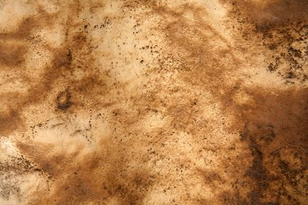 cowhide: Textured brown skin background with various patterns