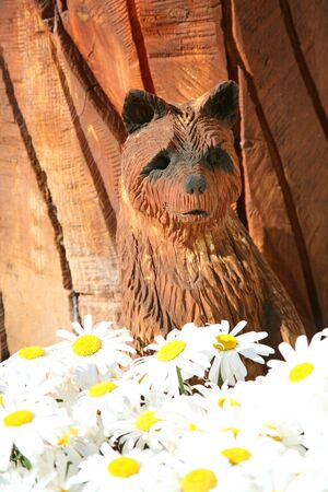 Wooden  bear with daisies in front photo