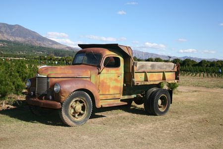 Rusty dump truck parked on a commercial  tree farm open for business photo