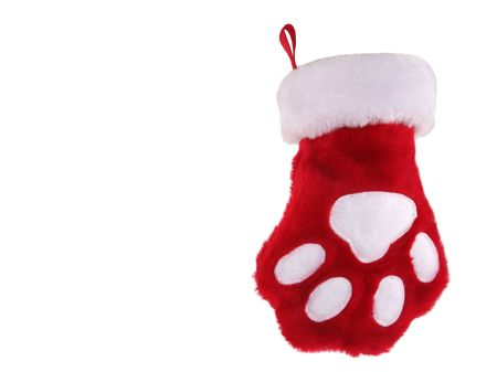 Red and white christmas stocking with paw print isolated on white background photo