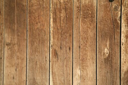 Wooden fence or the side of a building background with lots of tiny flies photo