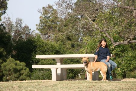 Young girl and her german shepherd dog at the park photo