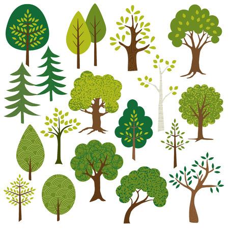 arbol de pino: clipart árboles Vectores