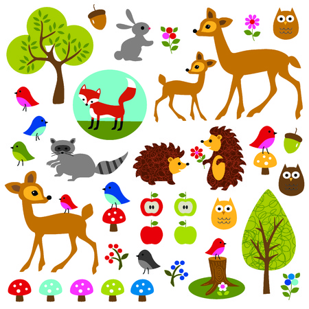Woodland Animals and plants Vector