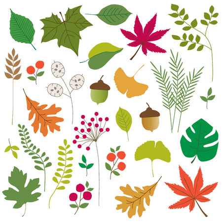 fronds: leaves clipart Illustration