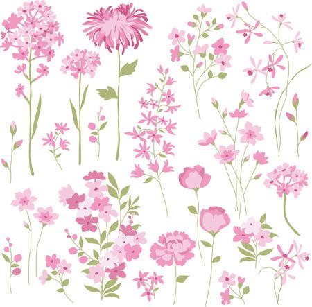 hand drawn pink flowers