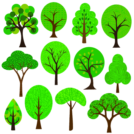 balsam: trees
