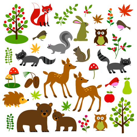 woodland wildlife clipart Illustration