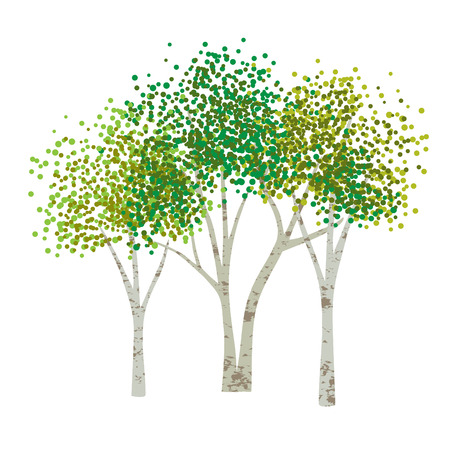 hand drawn aspen birch vector trees clipart Vettoriali