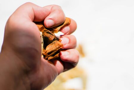 A man clenches a handful of packets of Swedish nicotine in his fist, snus.