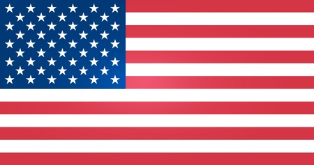 us government: Flag of United States