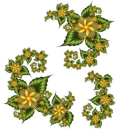Set of floral elements photo