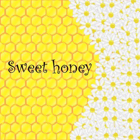 chamomile: Vector illustranion with honeycomb and chamomile