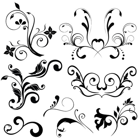Samples of floral vectors on white background Vector
