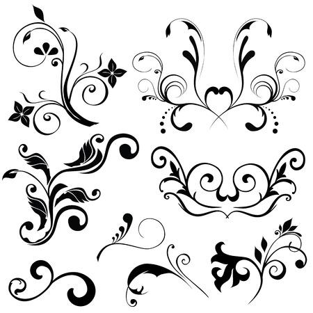 Samples of floral vectors on white background Illustration