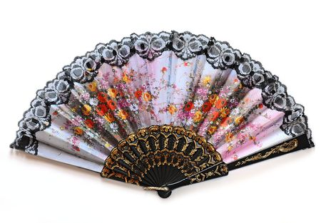 Beautiful fan with flowers, on white background