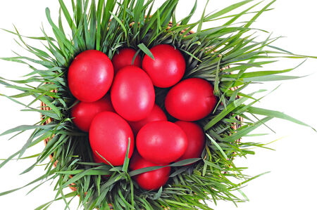 Red eggs on green grass, wooden basket; Easter tradition; white background