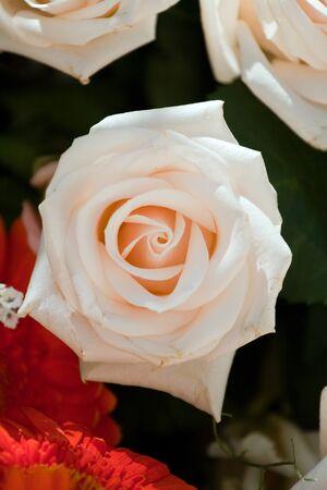 floreal: Floreal Composition for a wedding decoration
