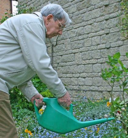 Retired gentleman watering the garden photo